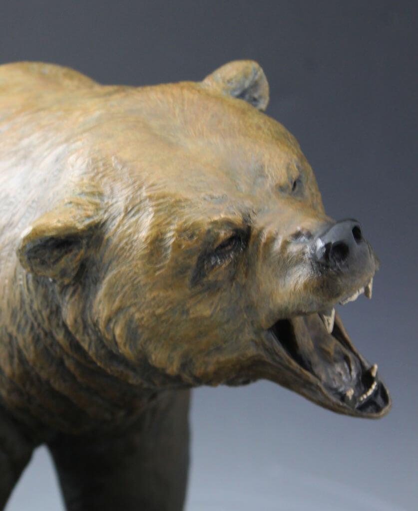 Bear 7 cont