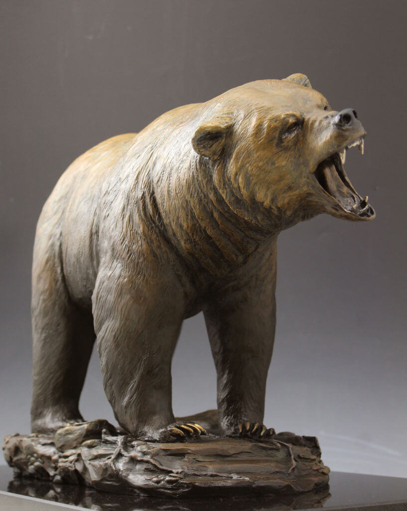 Bear 8 cont c web