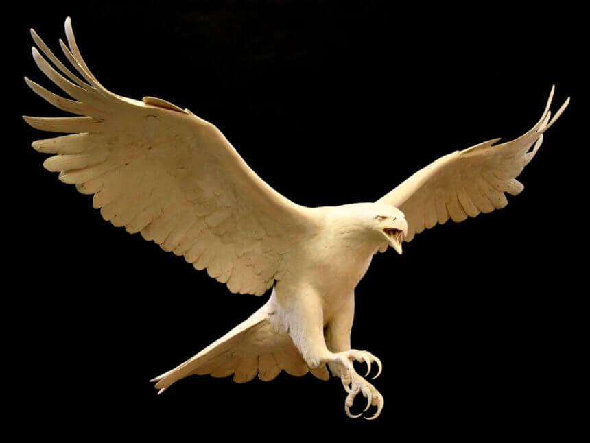 Bald Eagle 2_em