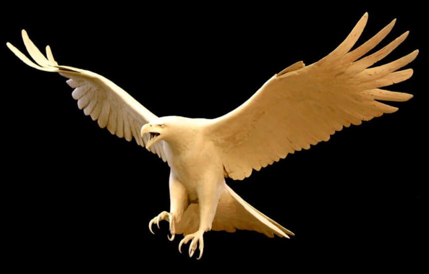 Bald Eagle Clay_em